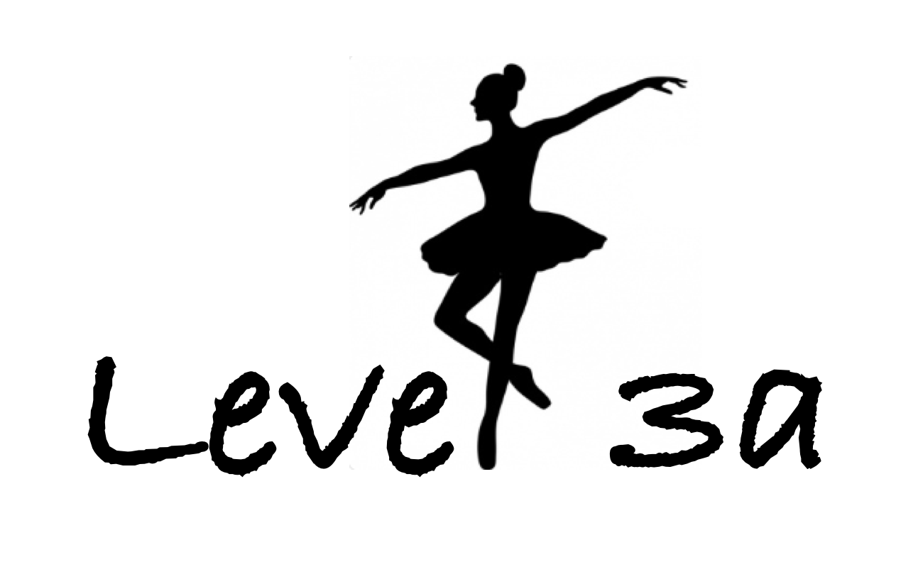 Northpass level covers 3a.png