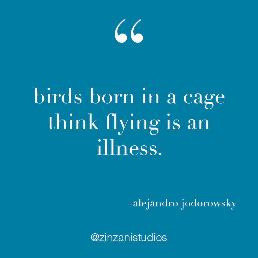 birds born in cages.jpg