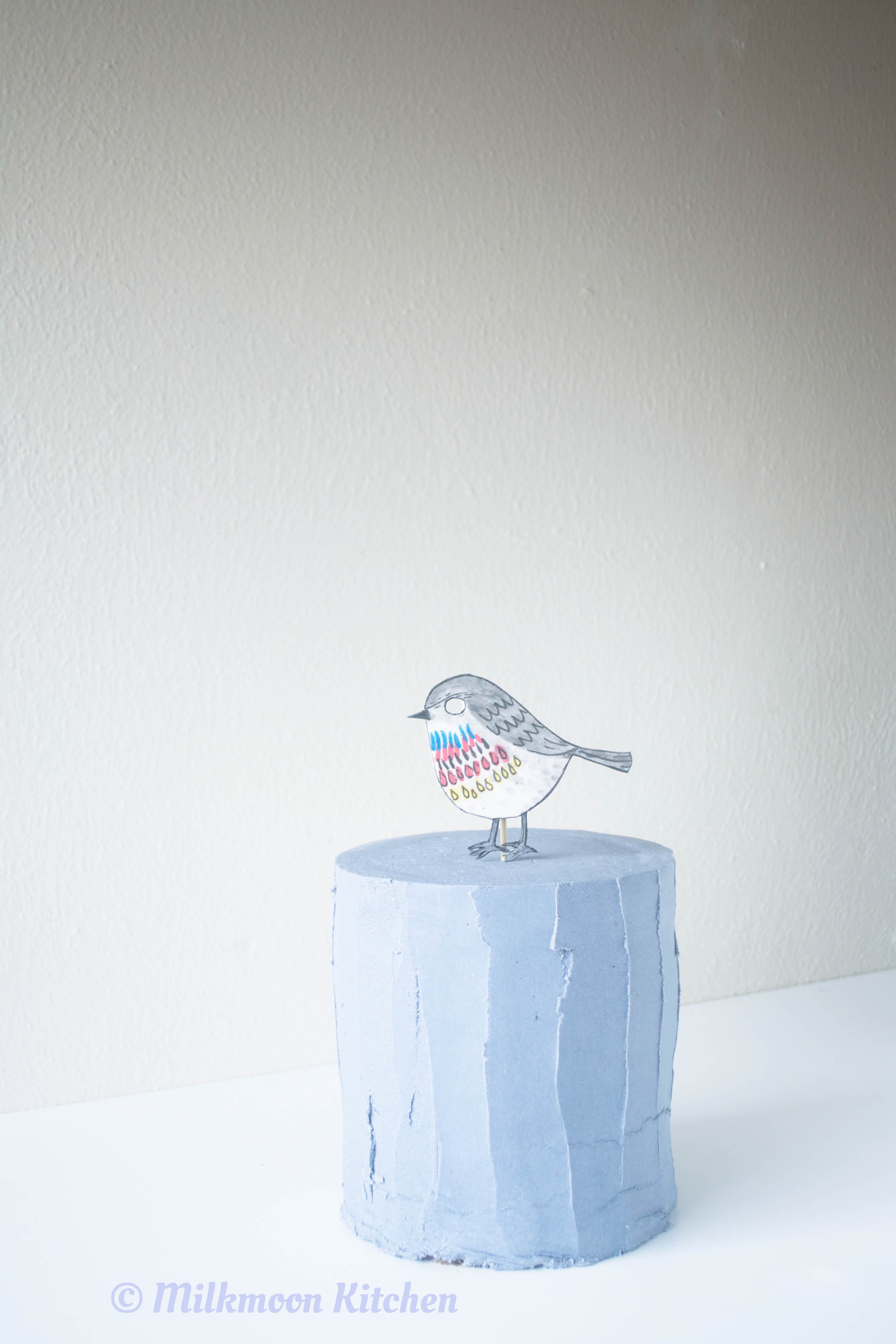 Little Bird Edited (6 of 10).jpg