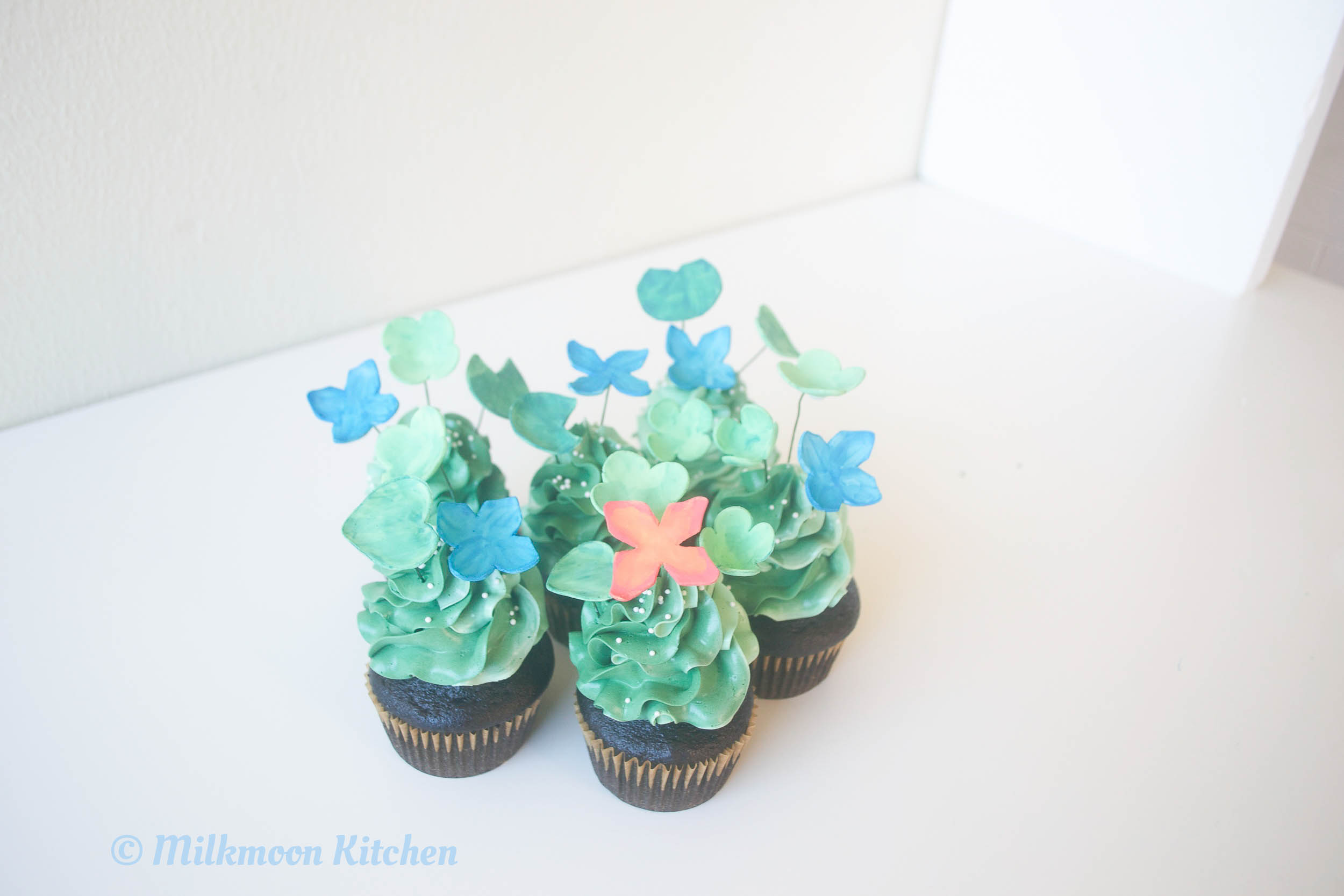 REAL Sprout Cupcakes Edited (5 of 12).jpg