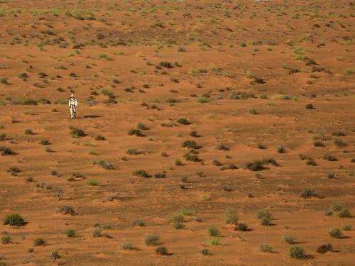 wahiba-sands-desert-walk.jpg