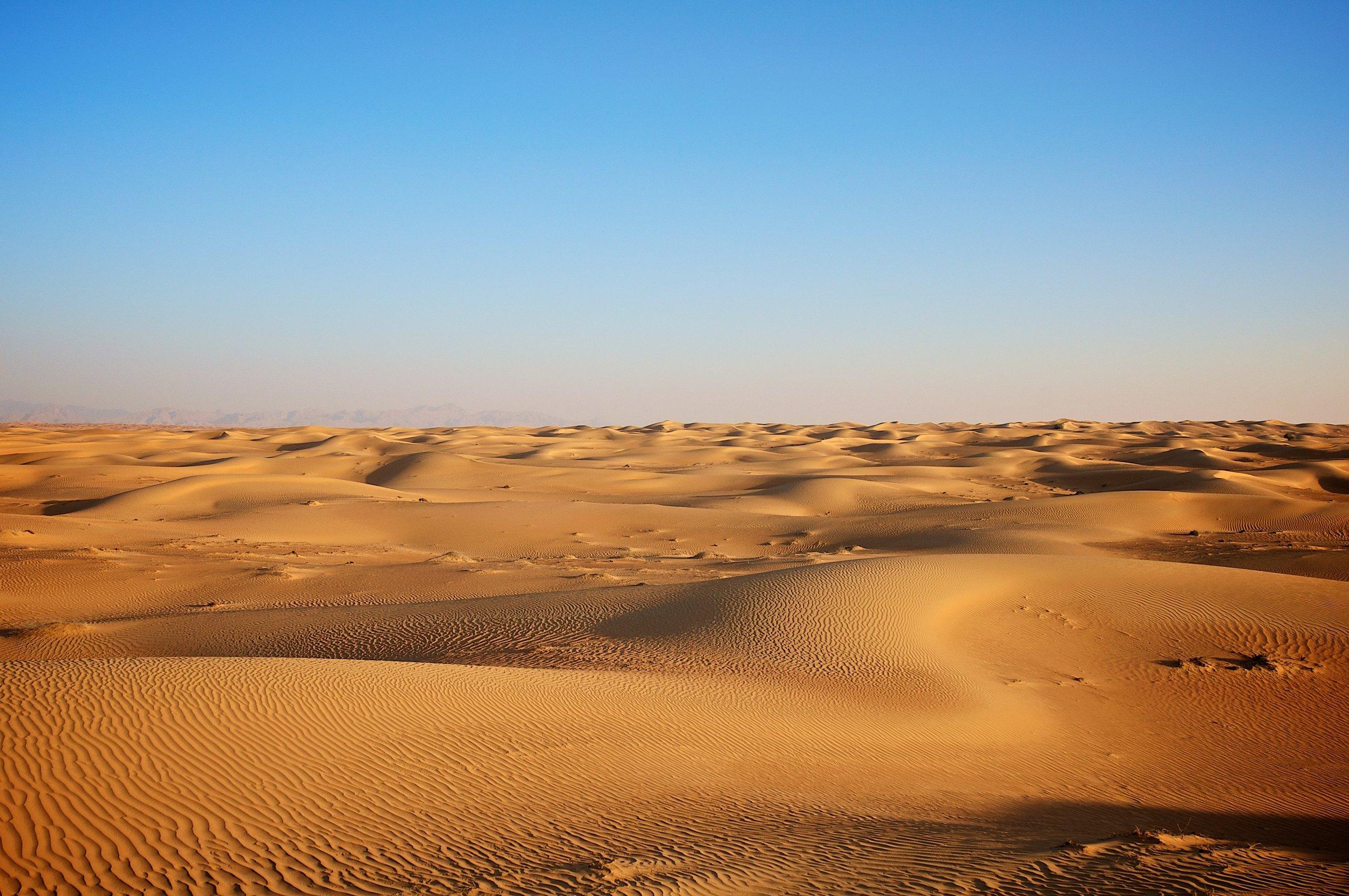 desert-guide.jpg