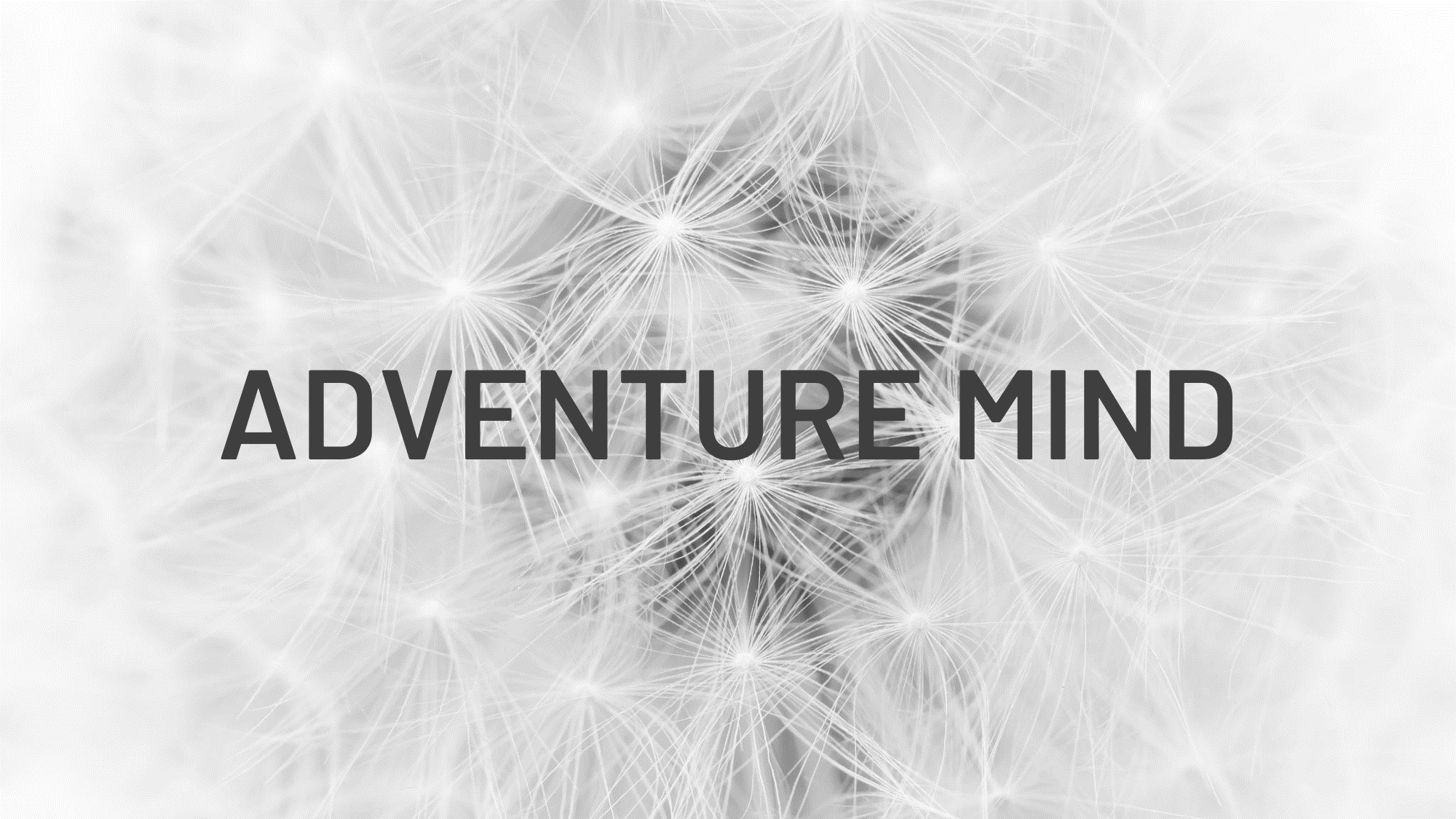 Adventure Mind Conference.png