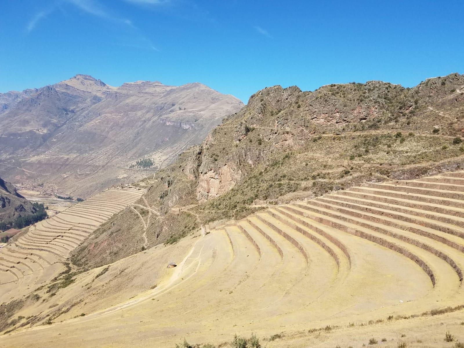 Inca terraces used for farming