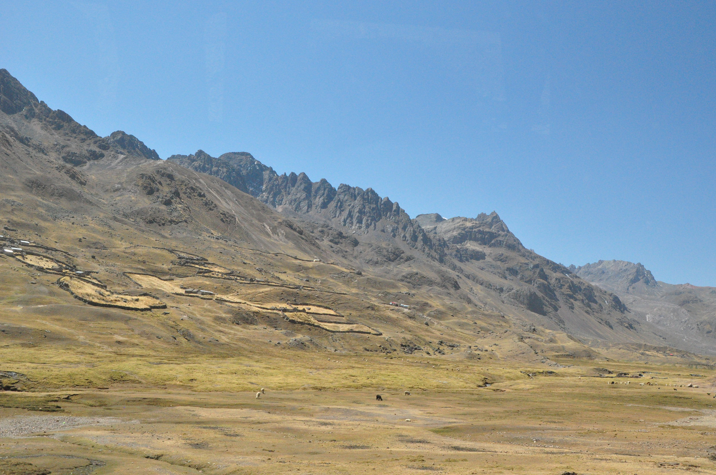 Driving down the mountain.  The fenced areas are for alpacas.