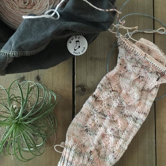 What self care has been looking like lately. 💗 Making time to knit the #mycupofteasocks with my #whfcsockclub ladies this month. Also happy to finally use the @labienaimee Pêche Mignon yarn that I got two years ago when I was in Paris. . . . . . #sockknitting #knitting #mightywooly #mightytraveler #labienaimee #labienaimeeyarn #peêchemignon #socktawk #operationsockdrawer #handknitwardrobe #wip #handknit #destash #magicloop
