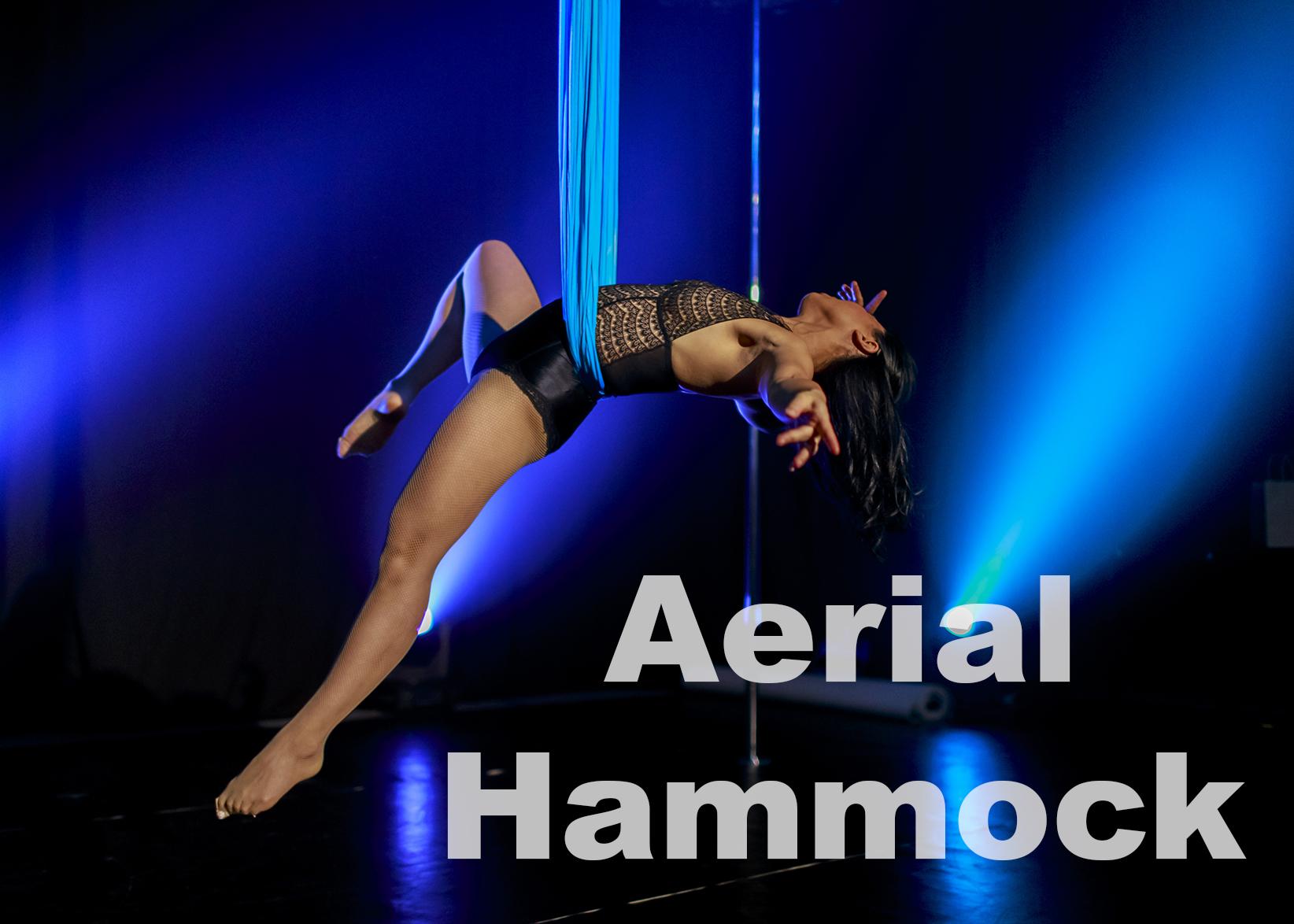 AerialHammock.jpg