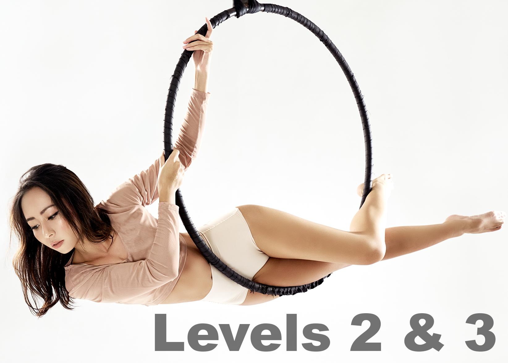 Hoop Level 2and3.jpg