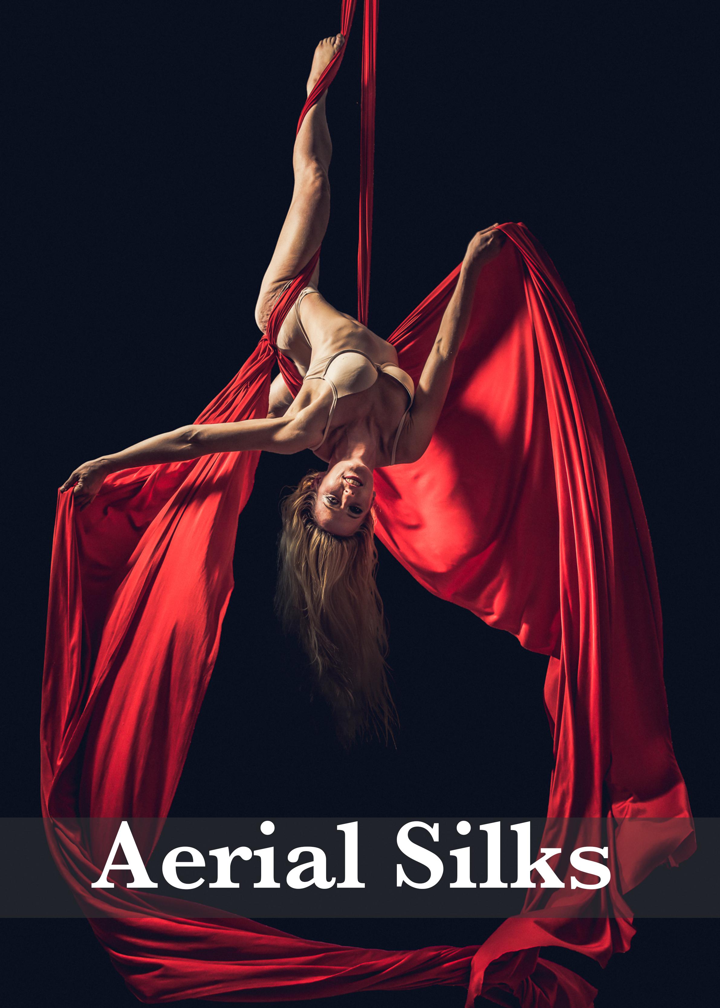 Aerial Silks.jpg