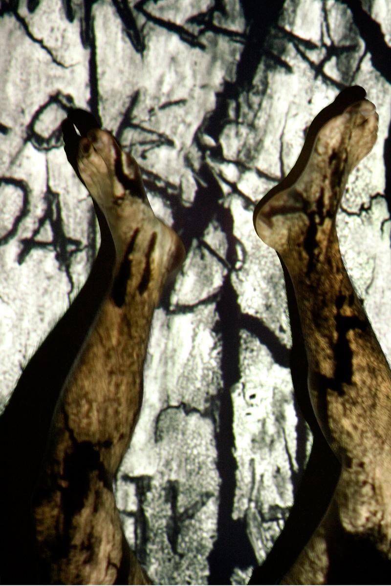 "Anne Sato   The following is placeholder text known as ""lorem ipsum,"" which is scrambled Latin used by designers to mimic real copy. Donec eu est non lacus lacinia semper. Class aptent taciti sociosqu ad litora torquent per conubia nostra, per inceptos himenaeos. Suspendisse nec congue purus. Mauris egestas at nibh nec finibus. Mauris id fermentum nulla."