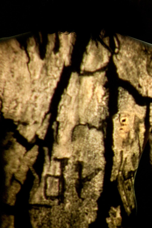 "Judith Zhao   The following is placeholder text known as ""lorem ipsum,"" which is scrambled Latin used by designers to mimic real copy. Integer tempus, elit in laoreet posuere, lectus neque blandit dui, et placerat urna diam mattis orci. Nullam sit amet nisi condimentum erat iaculis auctor."