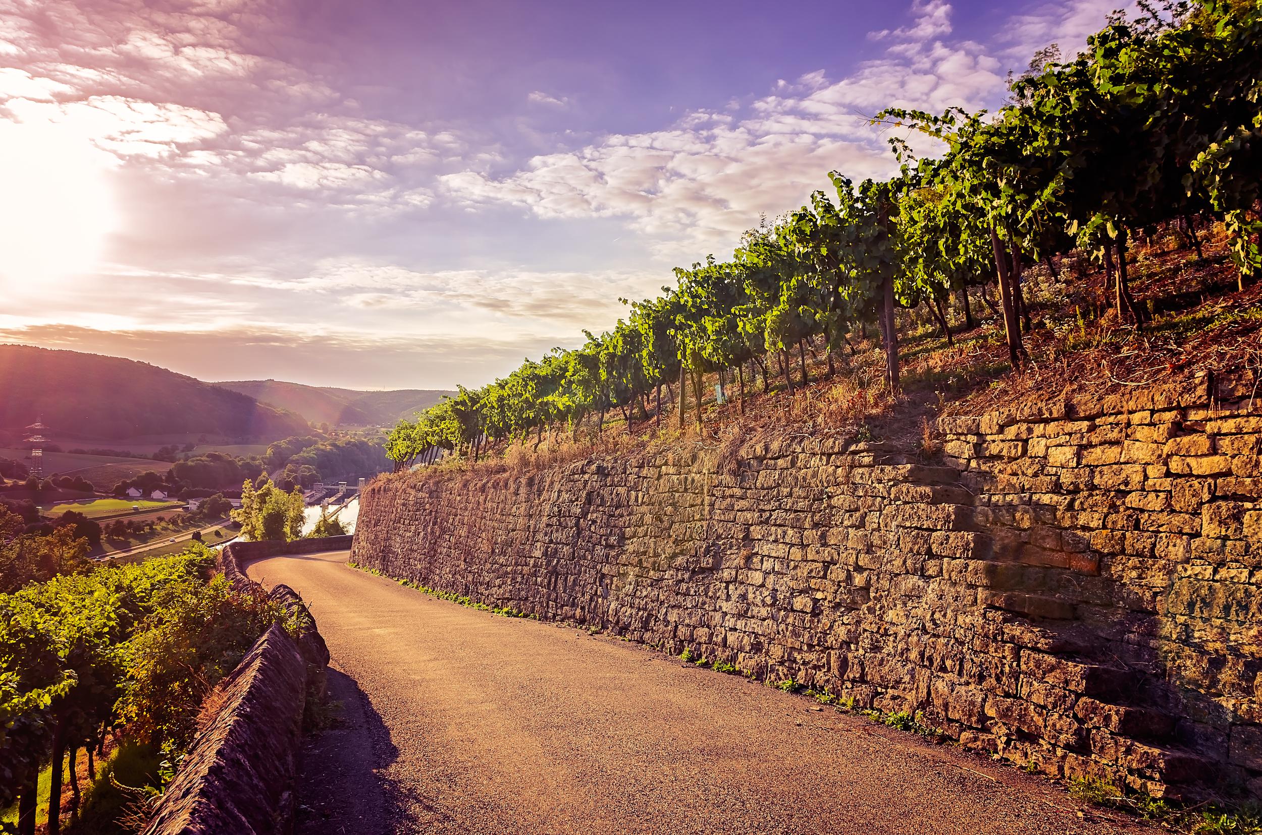 Burg Hornberg -8574-HDR-bewerkt.jpg