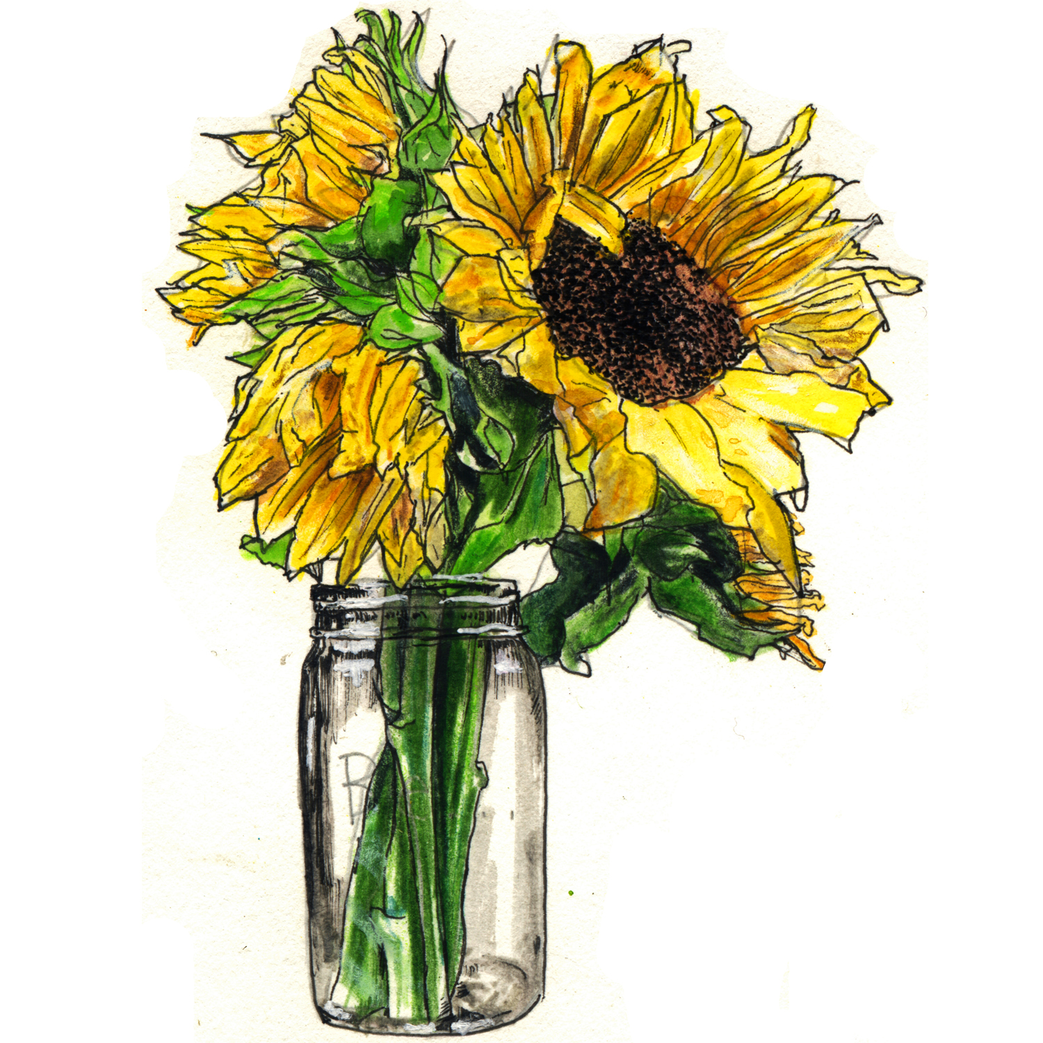 Sunflower Jar - squarespace.jpg