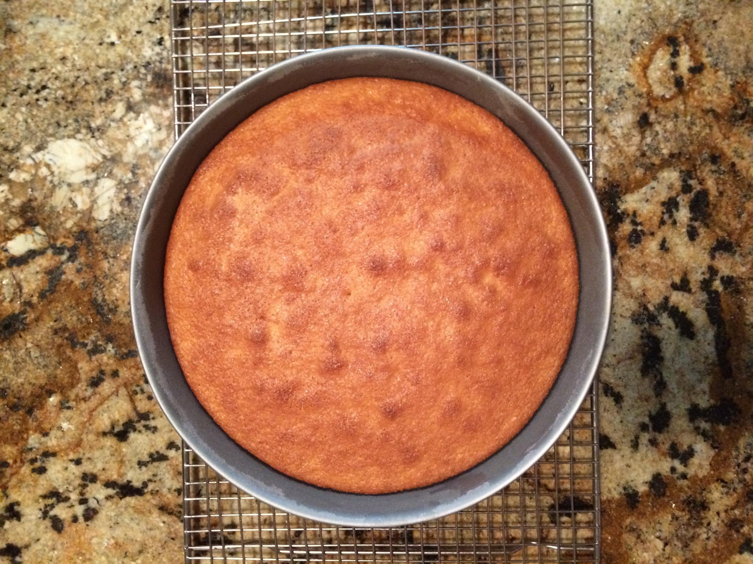 Baked spongecake
