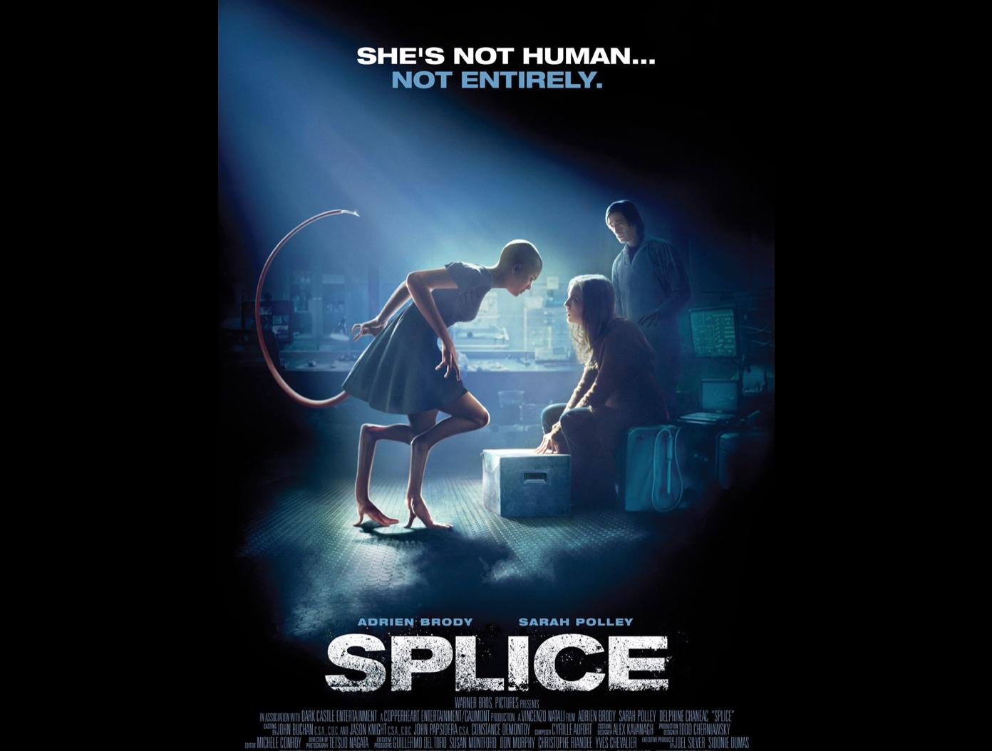 Splice_Cover_Pic.jpg