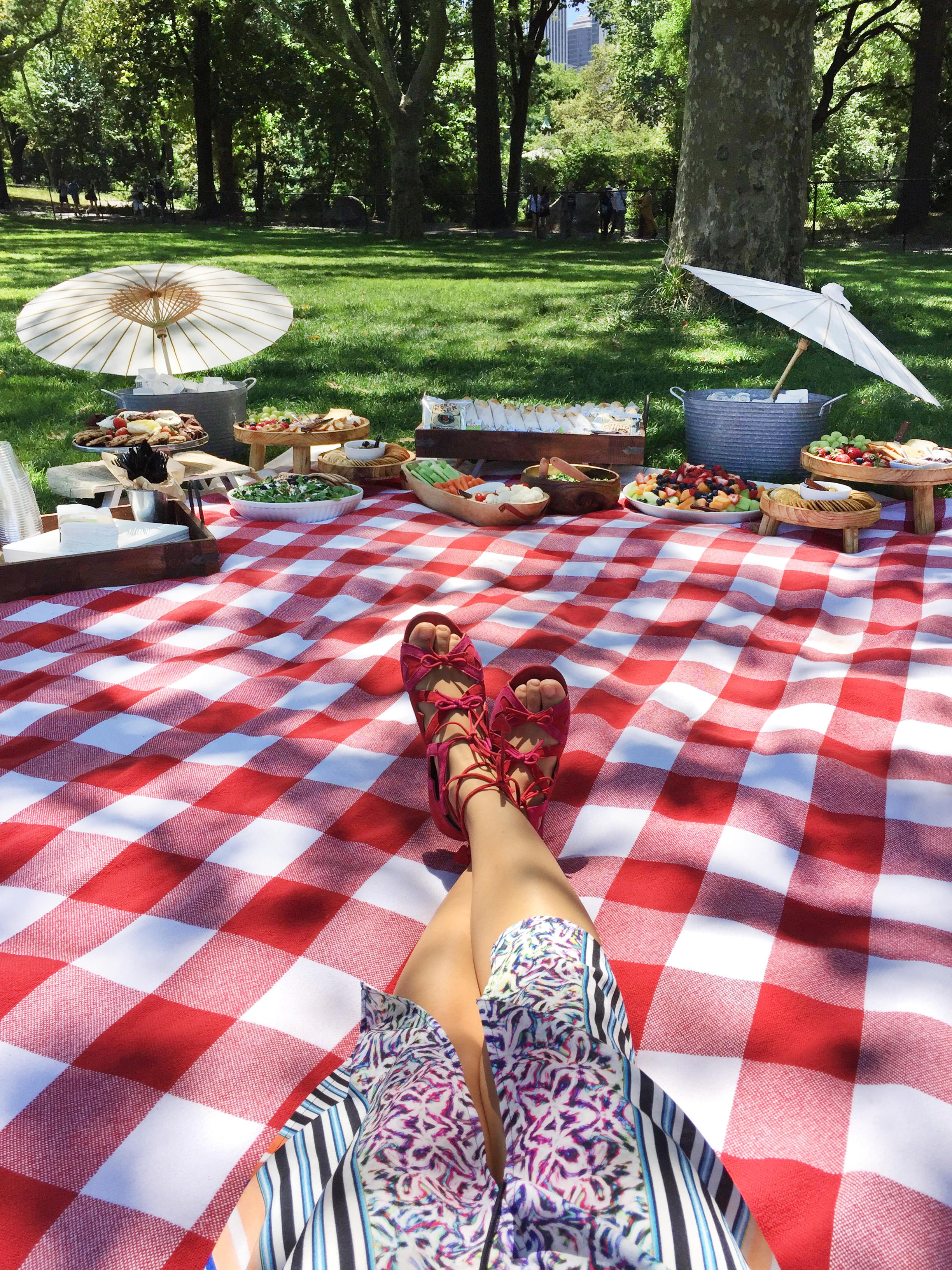 Patricia Chang Perfect Picnic Central Park