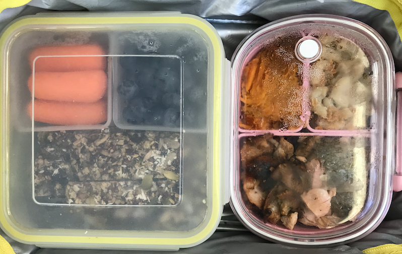 Pack snack and lunch (no nuts allowed)