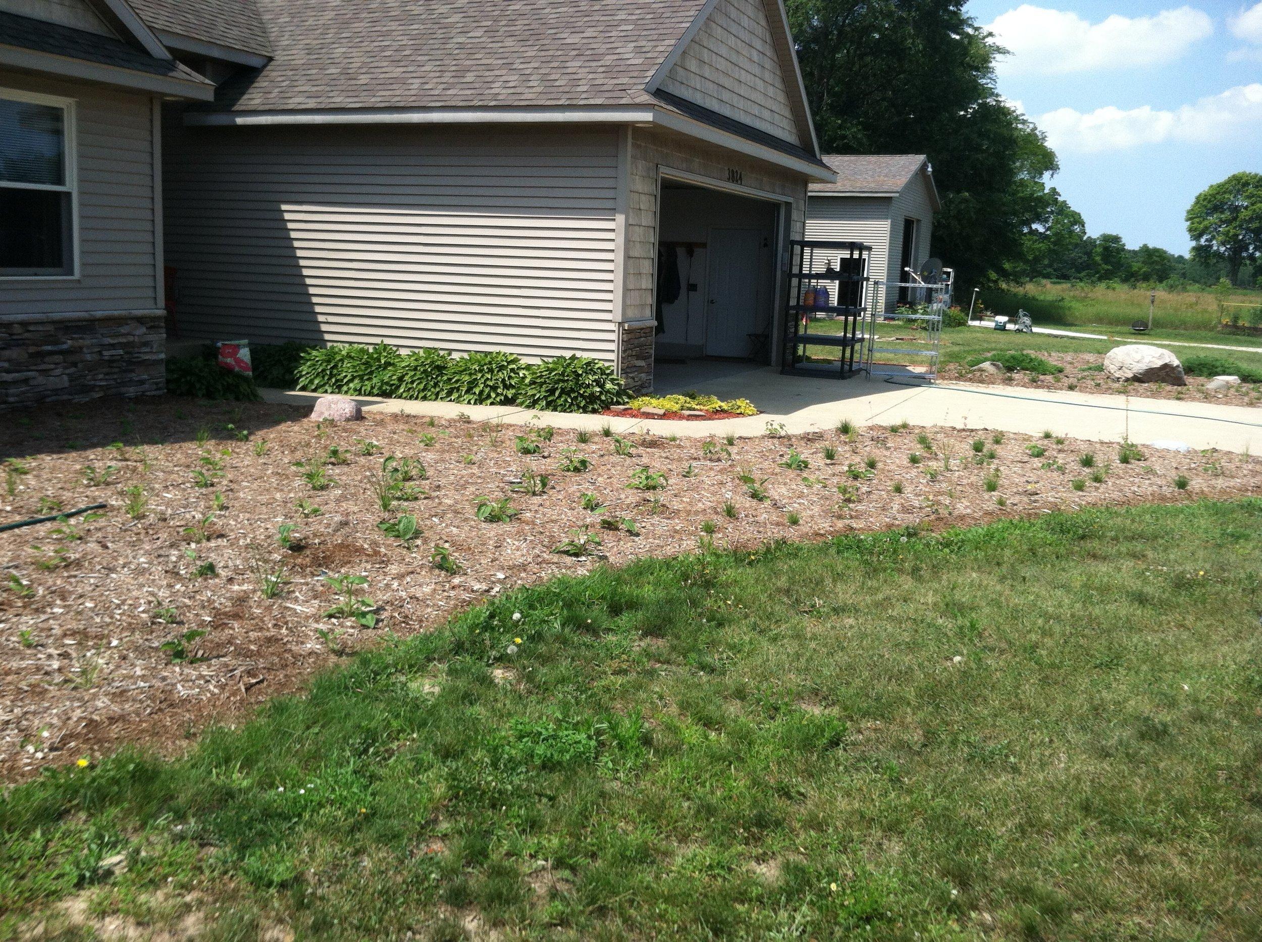 Hamilton Landscaping Project