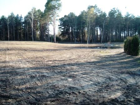 Sutton's Bay Prairie Project