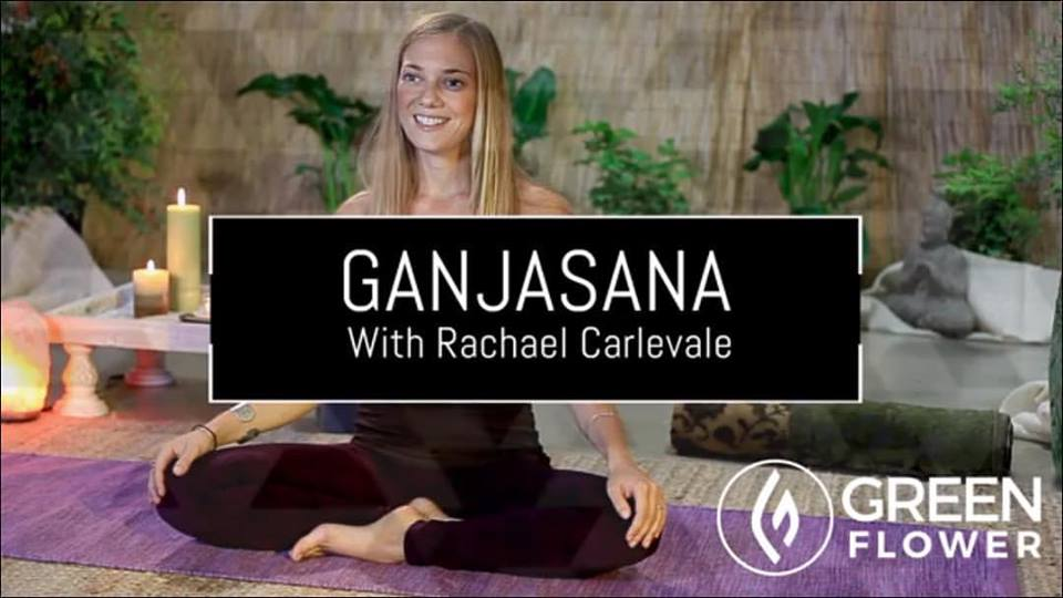 Cannabis Yoga for Pain Relief