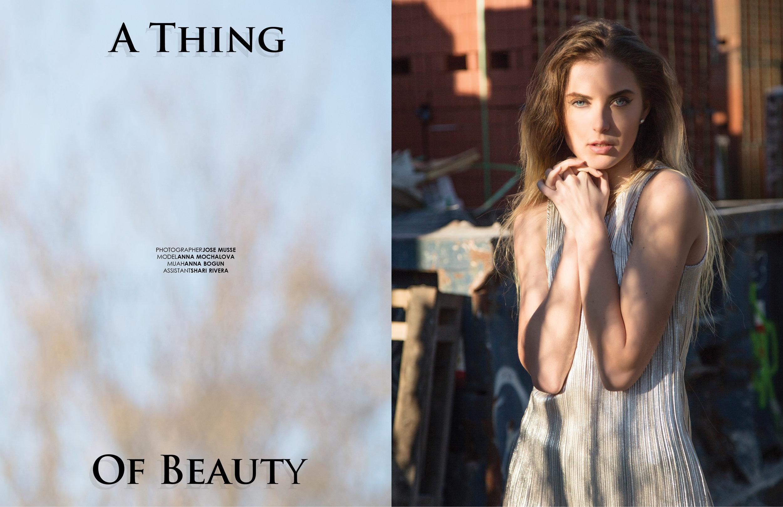 THING-BEAUTY-JOSE_MUSSE2.jpg