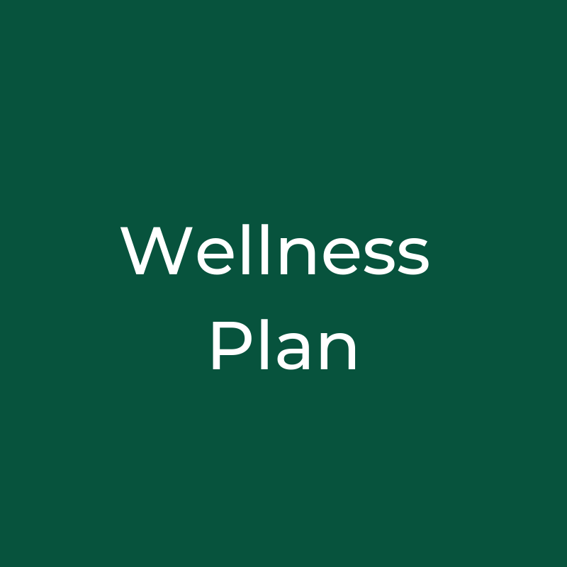 Wellness Plan.png