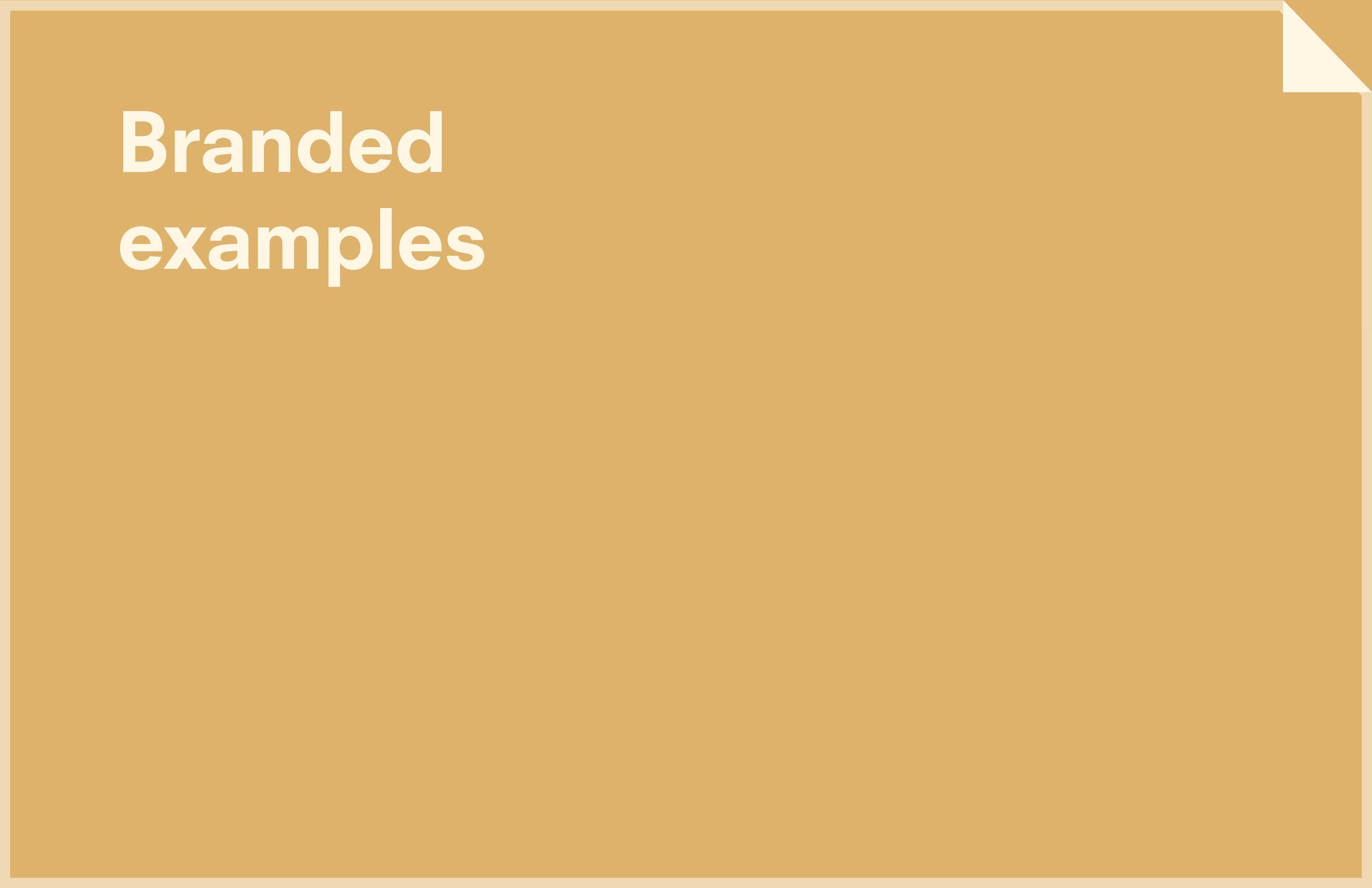 SPL BRAND GUIDELINES_210.jpg