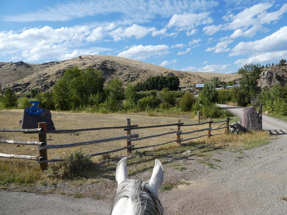 Riding Hazel back to the ranch after moving cattle… Photo by Ruth Chamberlain, September 2018