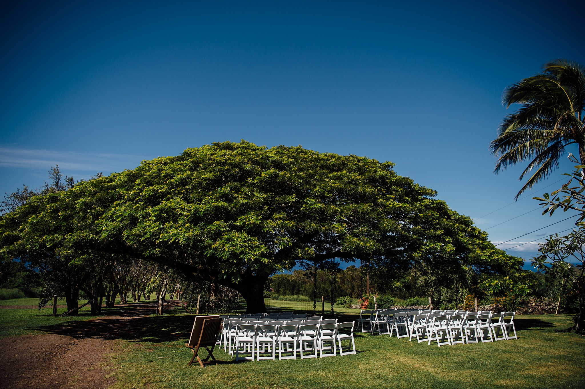 big island ranch wedding