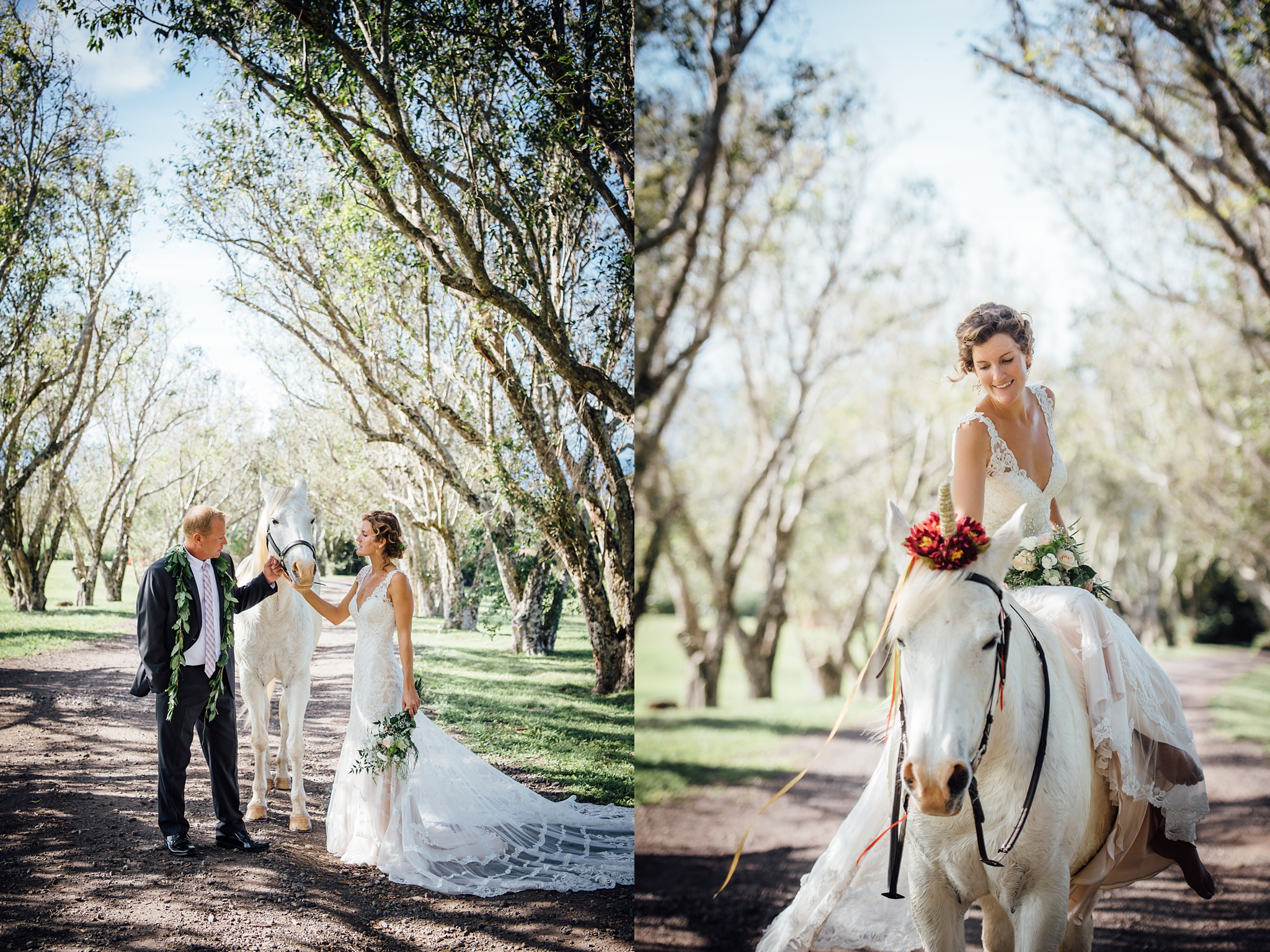 white horse hawaii big island wedding