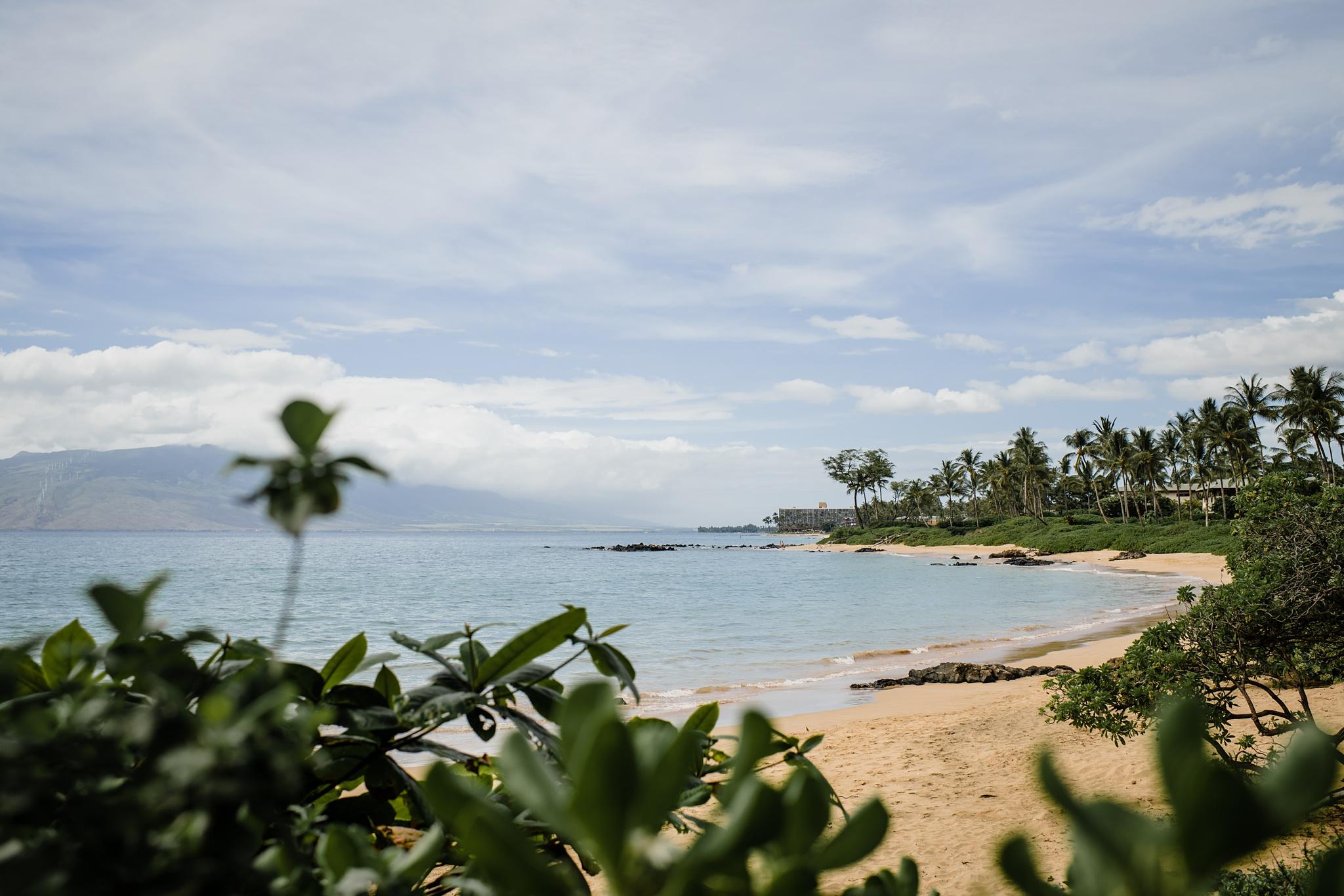 Wailea, Maui Wedding Photographer