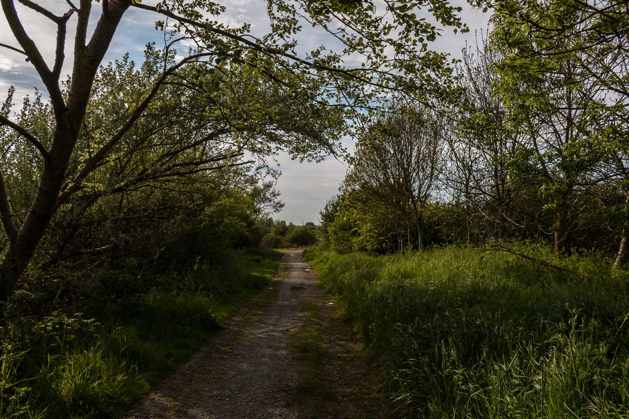 Milton Creek-10.jpg
