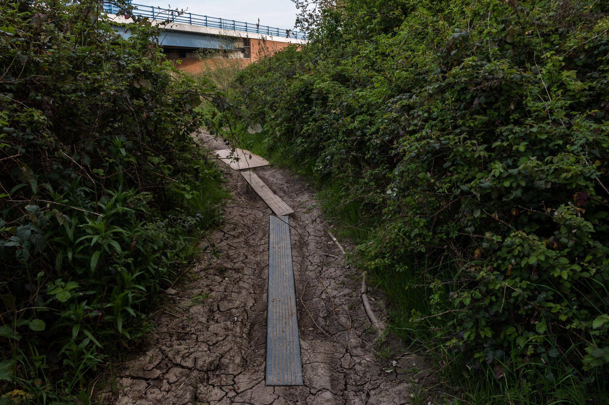 Milton Creek-11.jpg