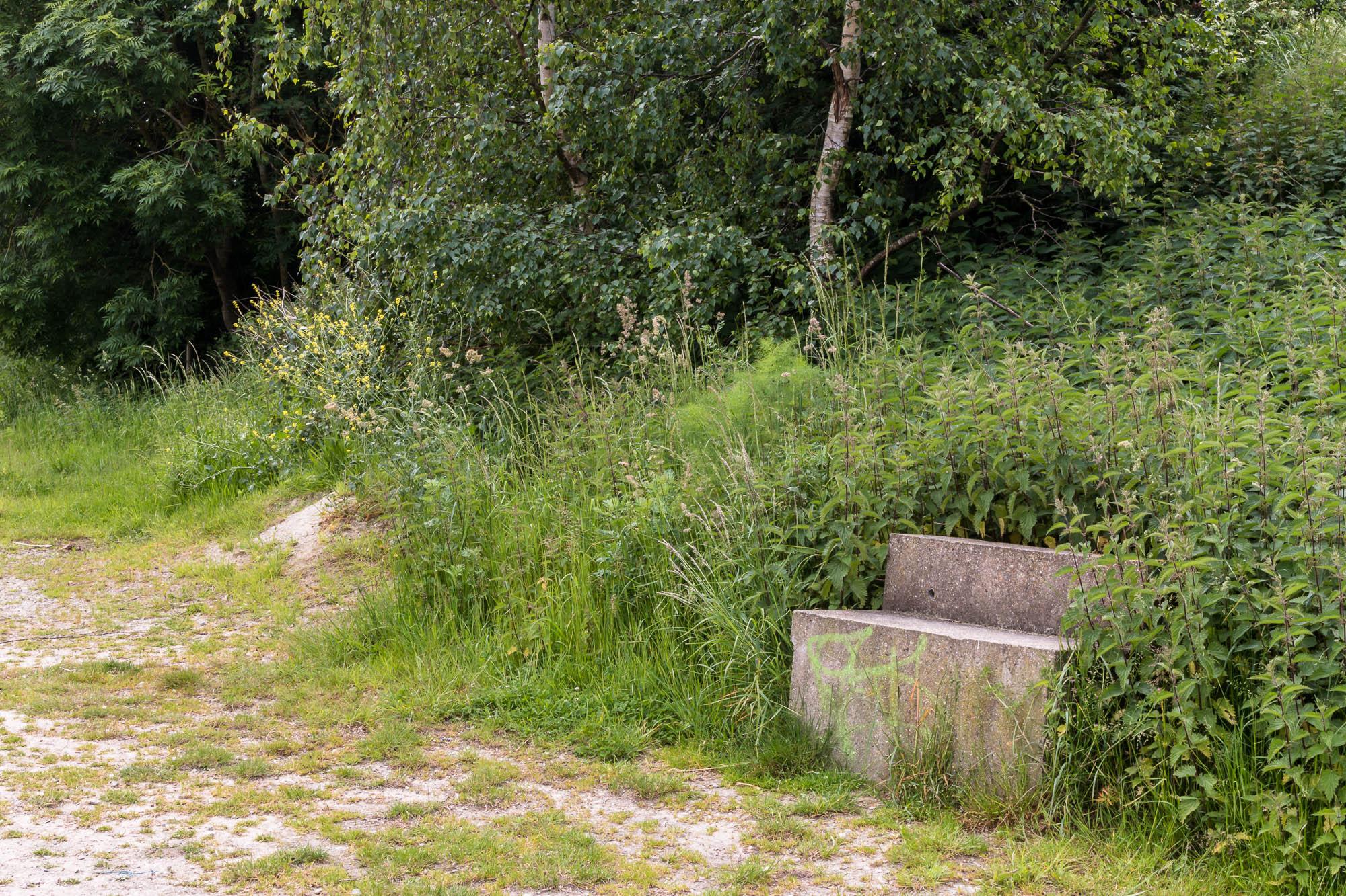 Milton Creek-24.jpg