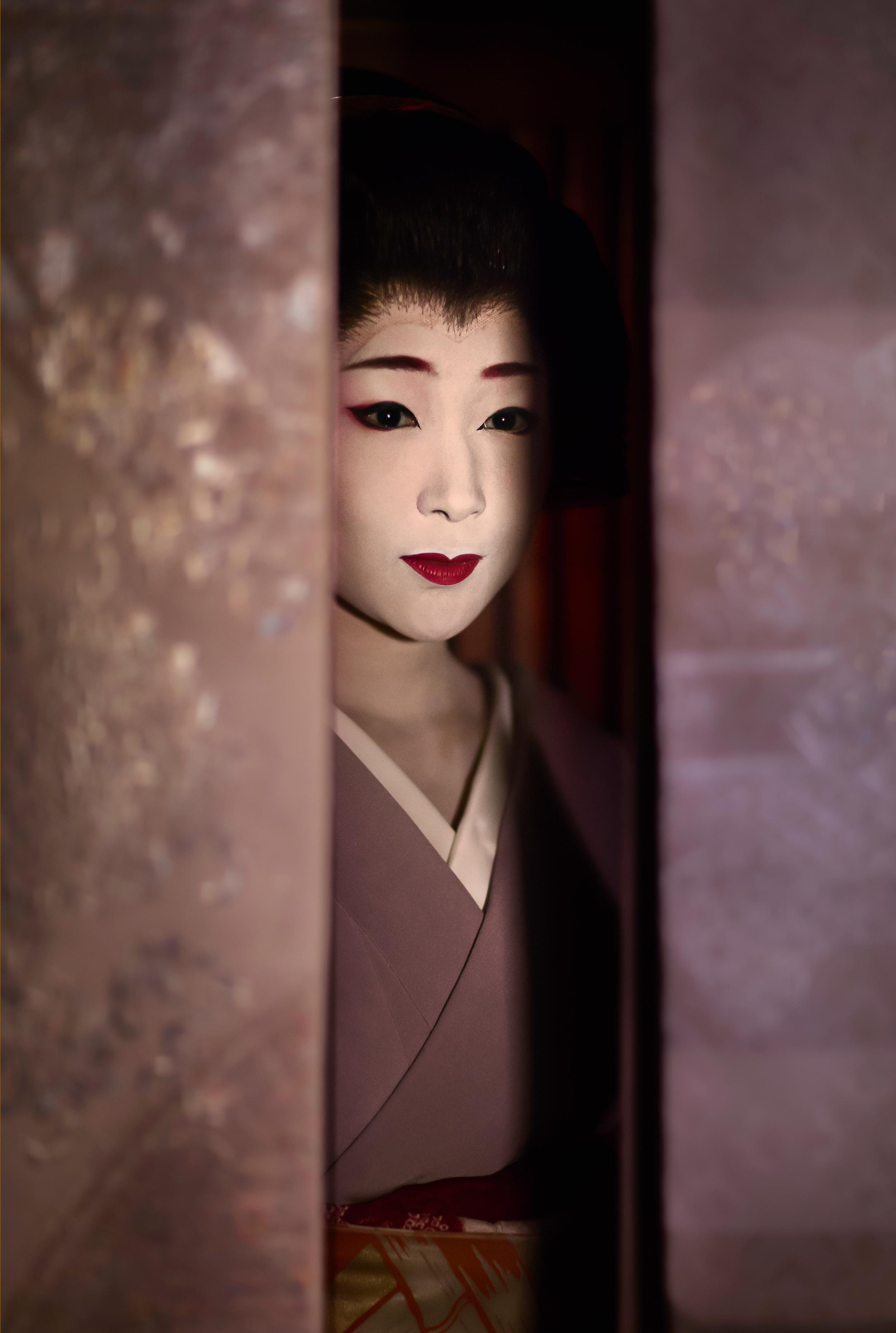 Seeing Geiko Exhibition Image 2