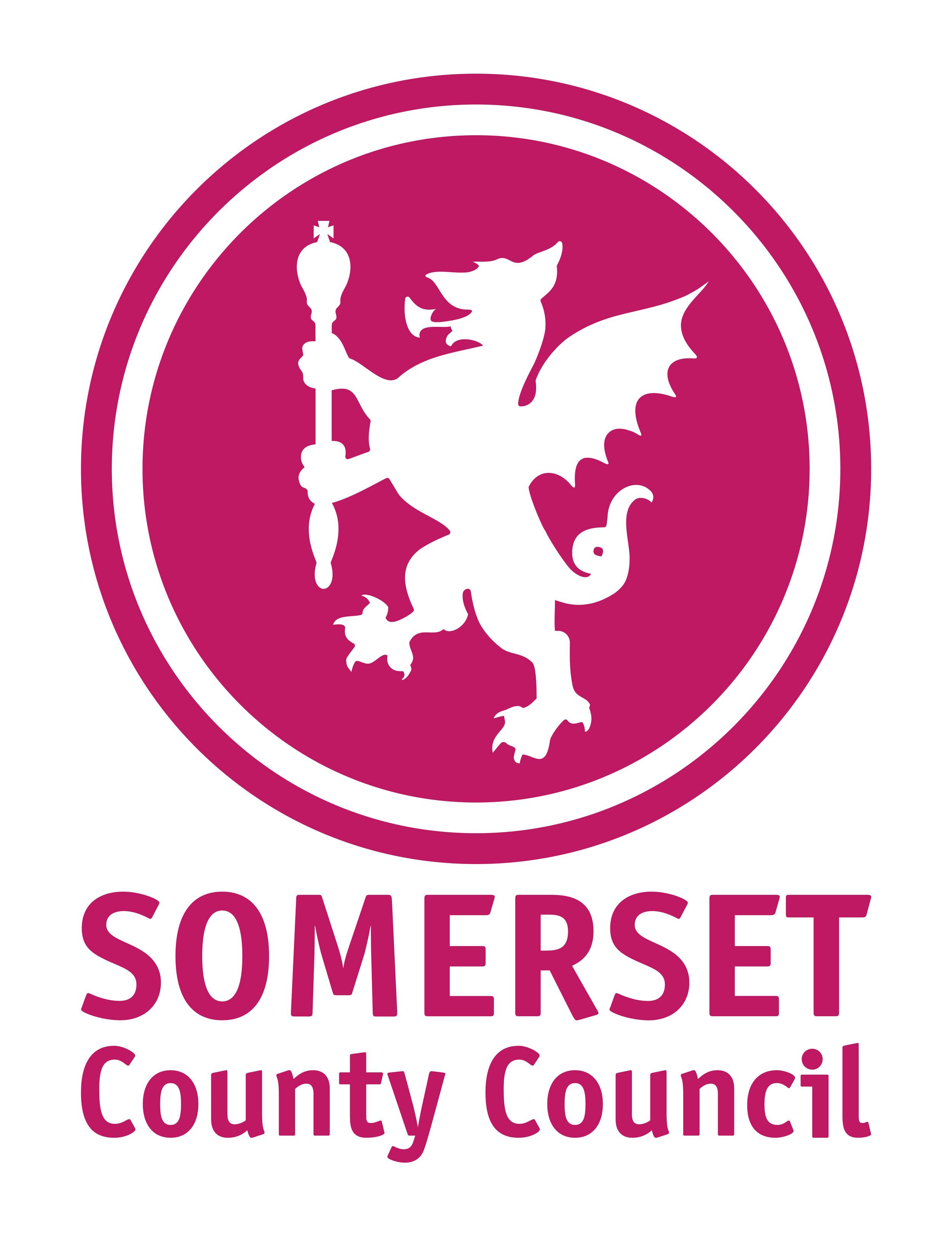 Somerset Council communications jobs.jpg