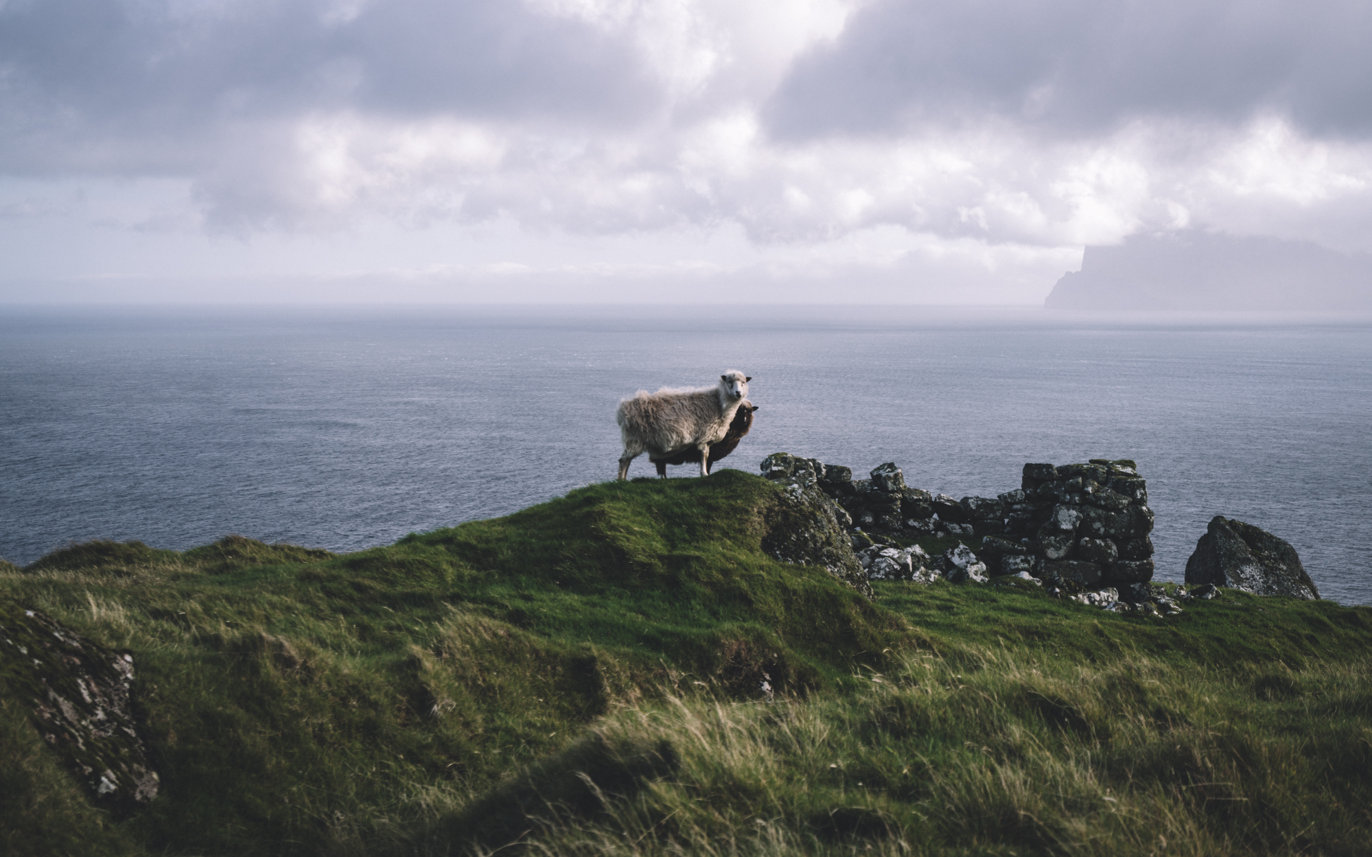 faroe-islands-72.jpg