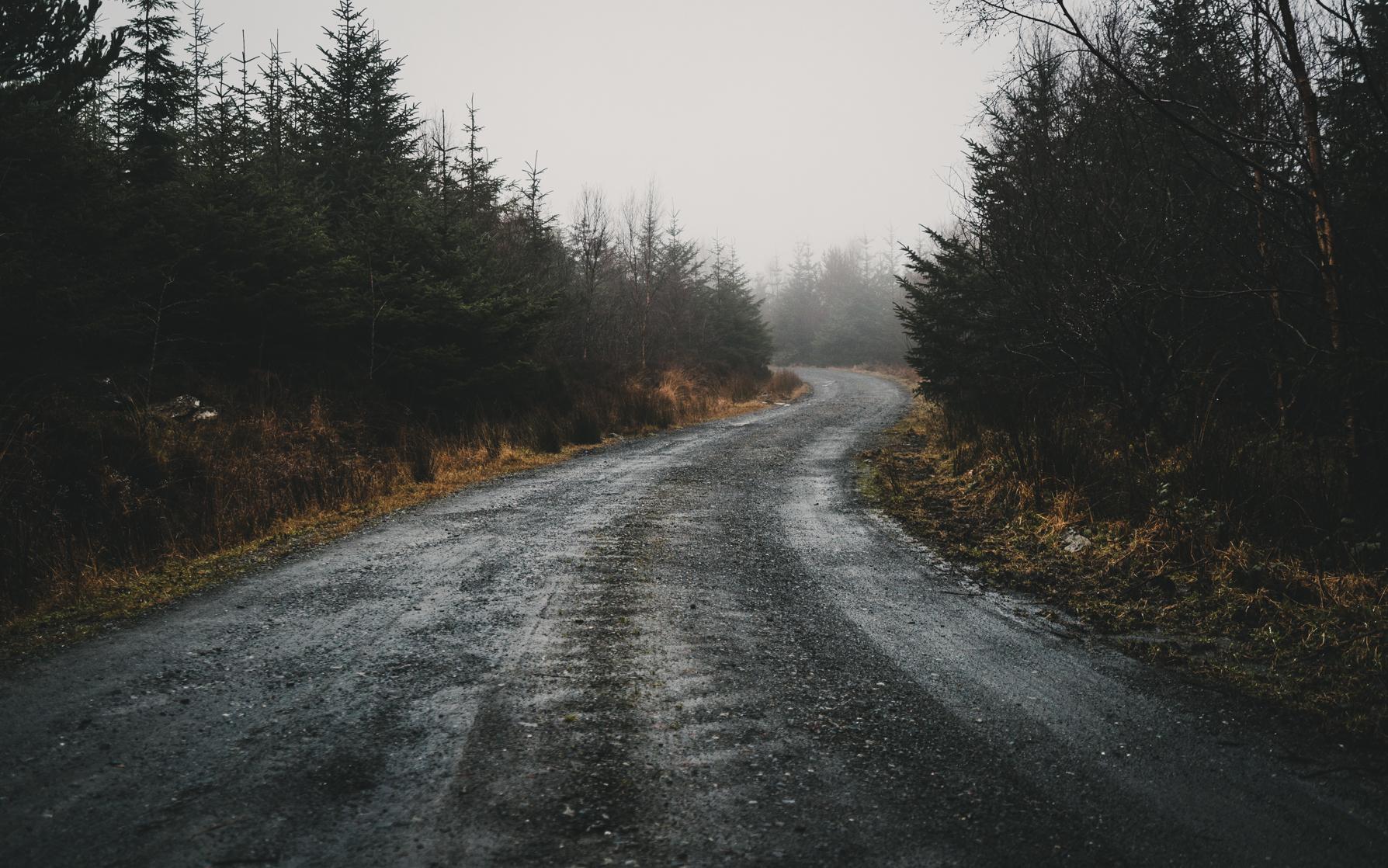 snowdonia_2-118.jpg