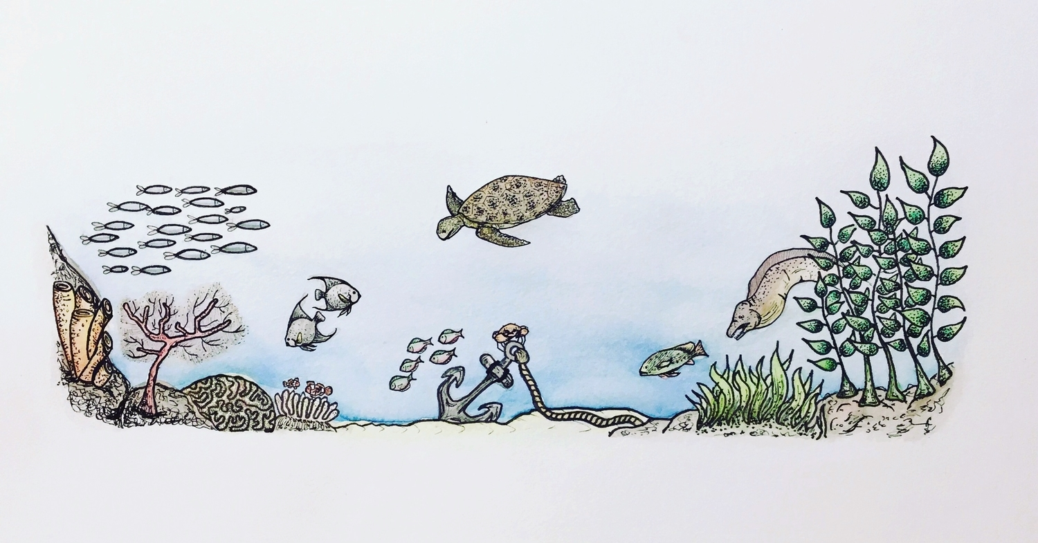 Illustration: Life under the sea is better...