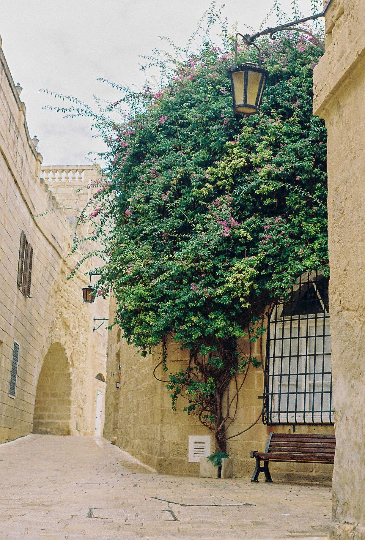 pretty streets of Gozo