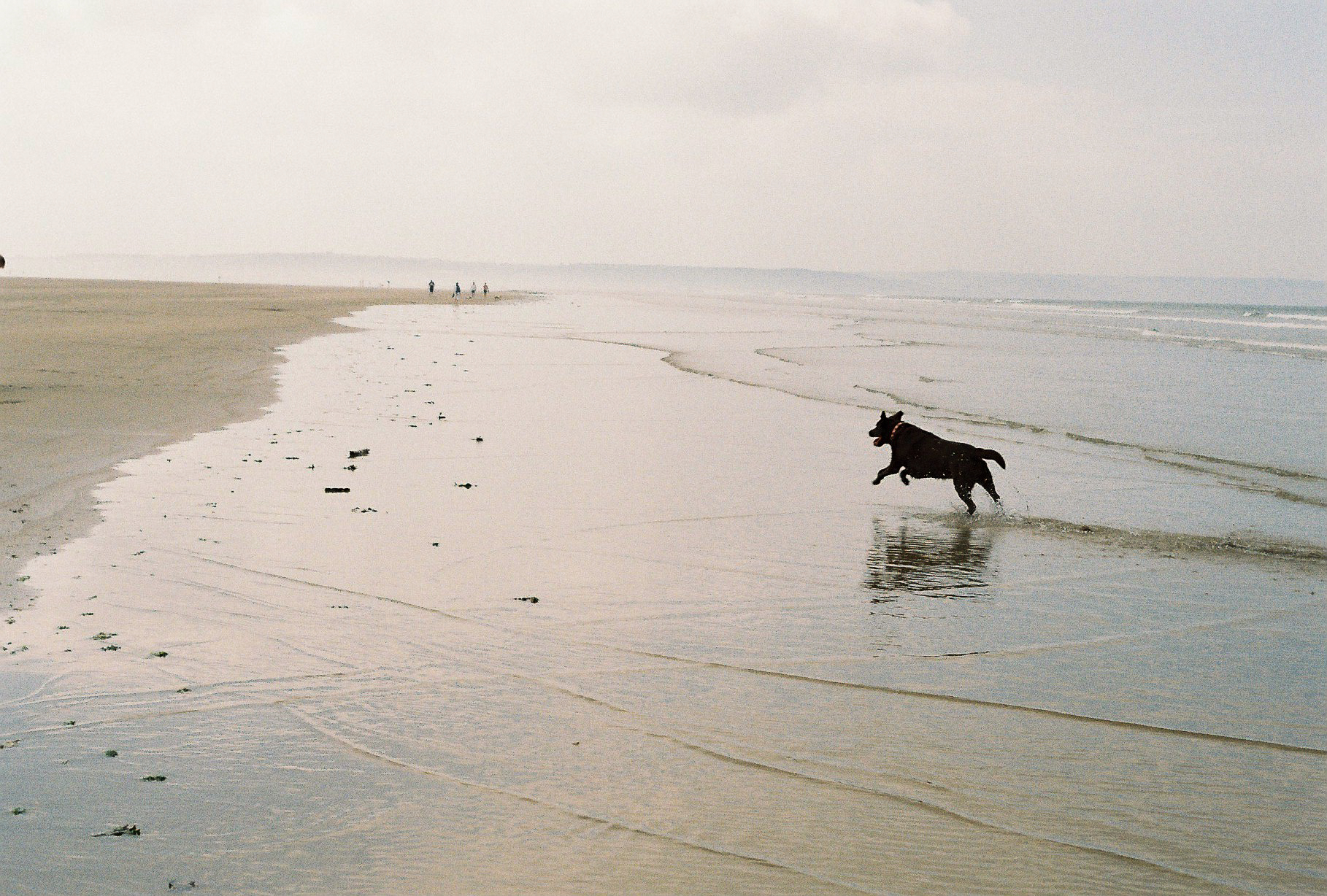 Saunton Sands, Devon, UK, May 2018 - Pentax K1000 Kodak Colour 250