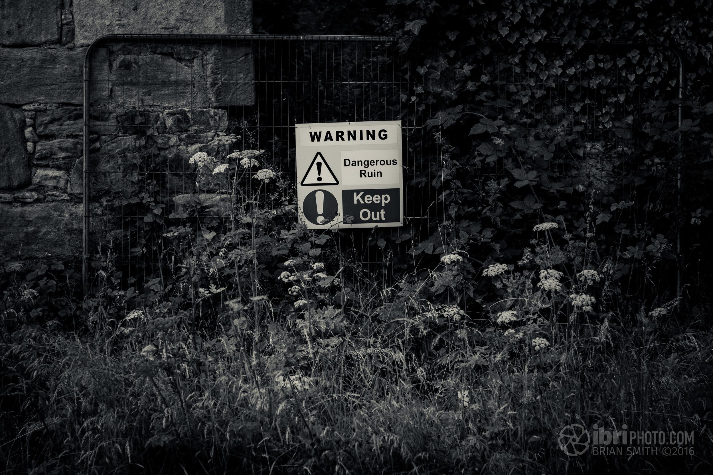 Dangerous Ruin