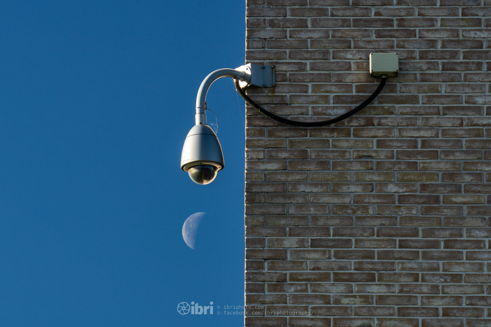 Waning Moon under surveillance.   iBri Photography  •  Facebook  •  Instagram  •  Twitter