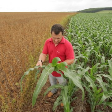 Corn and soy bean farming in Brazil