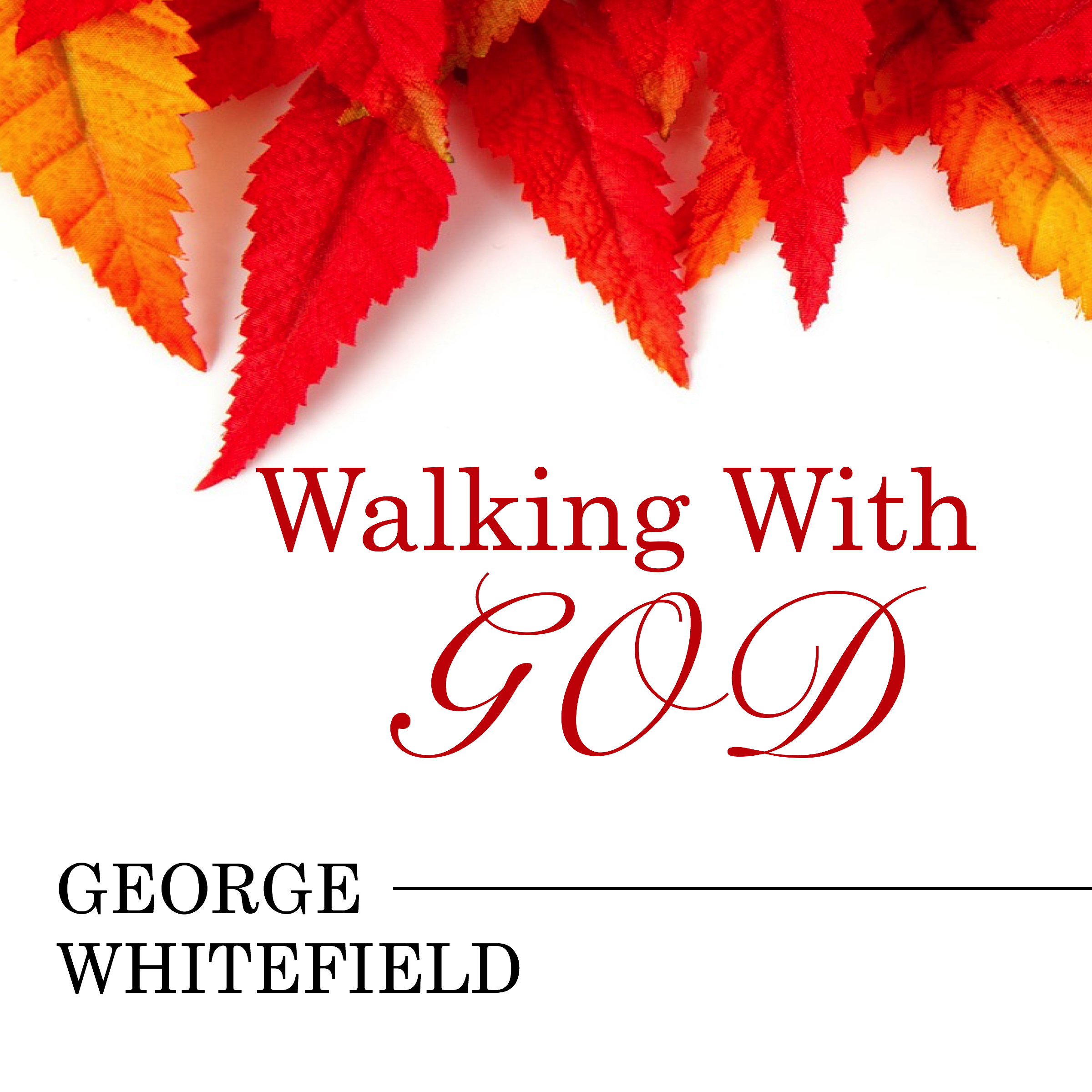 JPEG Audiobook (Walking with God).jpg