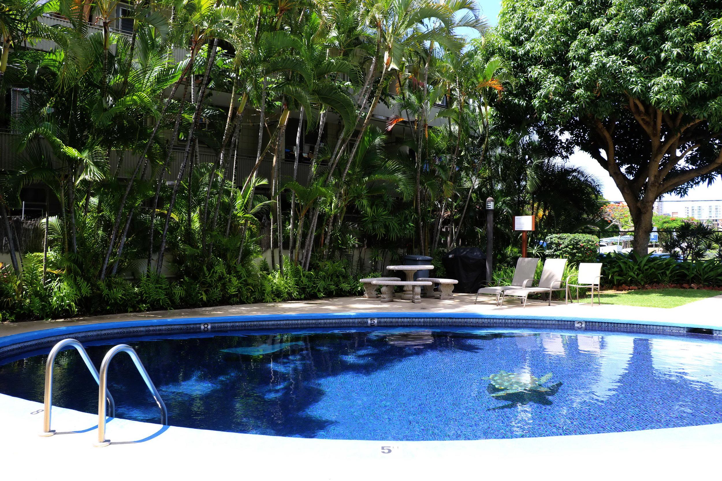 pool 2 (1).jpg