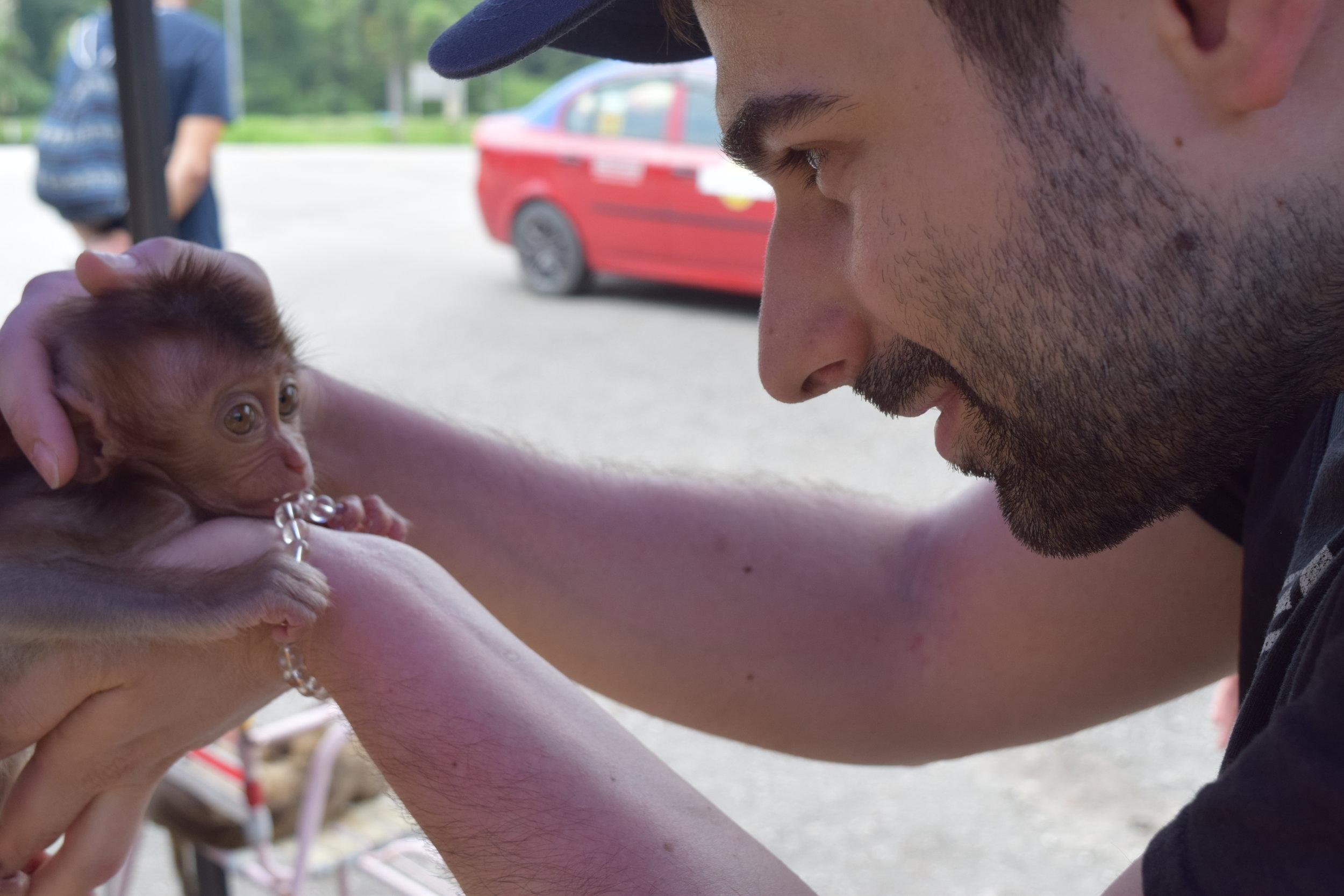 Un incontro con una scimmietta malesiana che si è particolarmente affezionata al mio braccialetto.