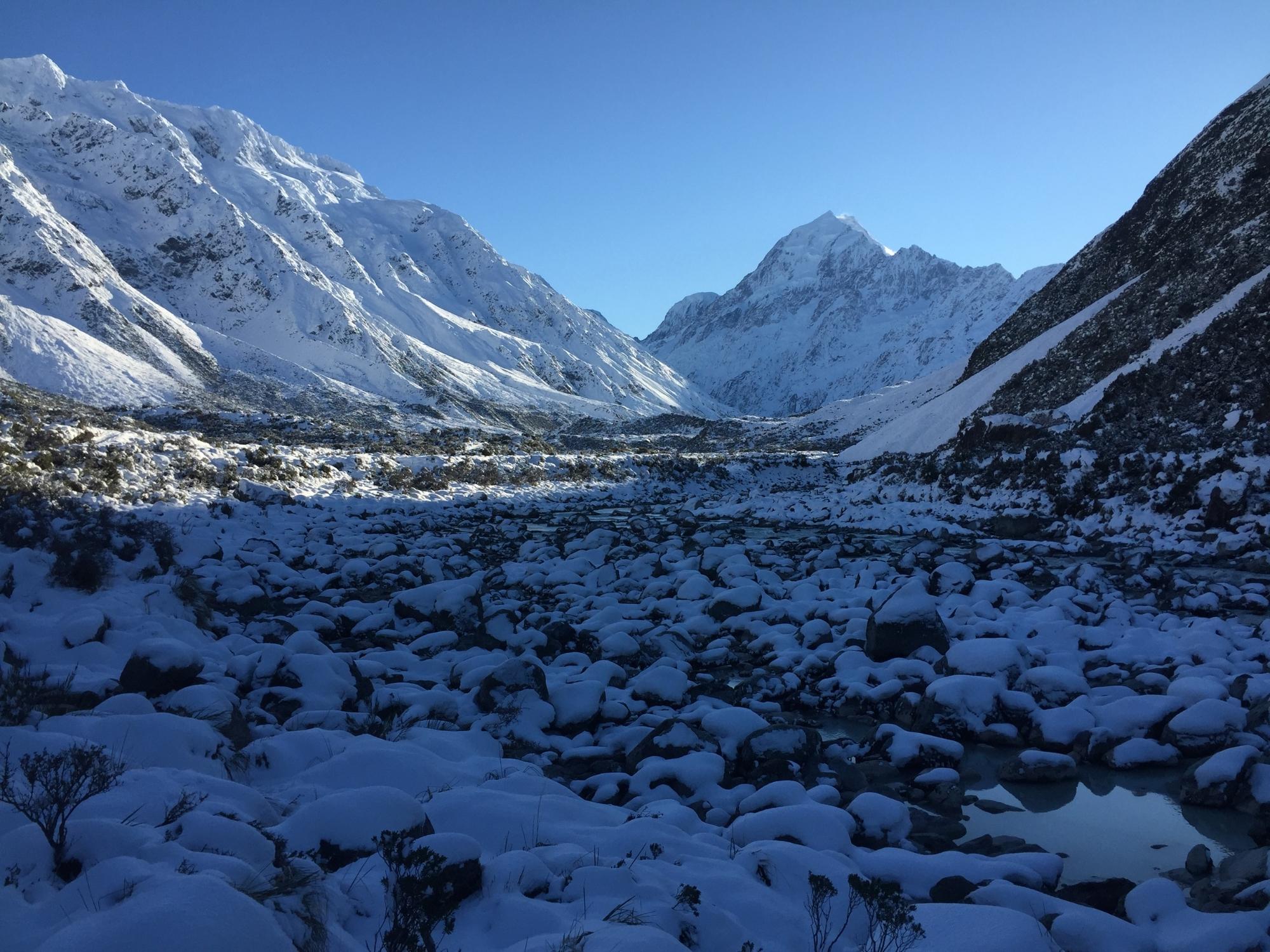 snow fields.JPG