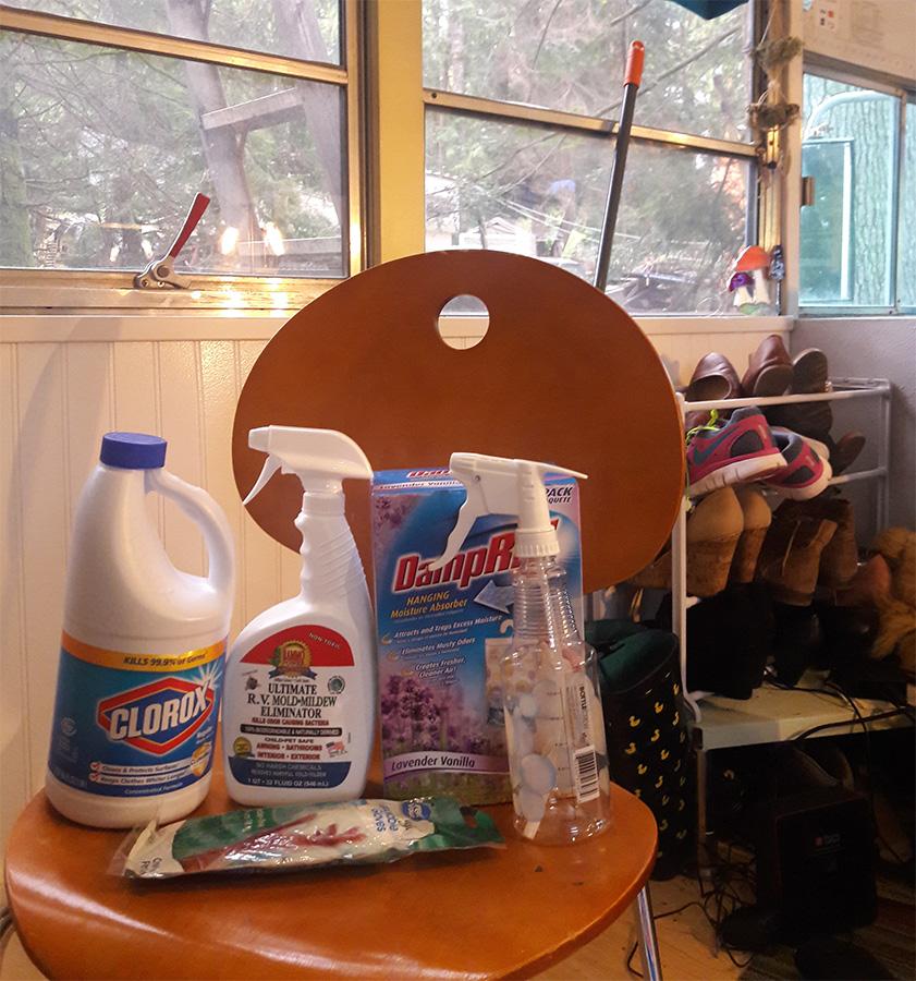 bleach-cleaning-sprays-skoolie-interior.jpg