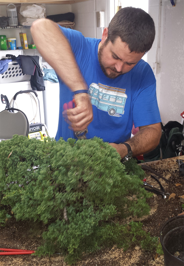 cutchin-emotivearts-skoolielove-garage-bonsai-florida.jpg